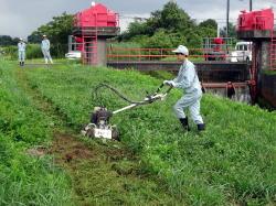 草刈り機初体験