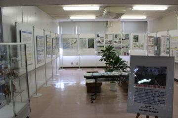 県民ギャラリー上江用水路1