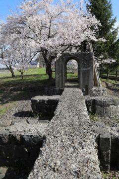 上江用水記念公園の春4